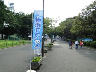 DSC08075