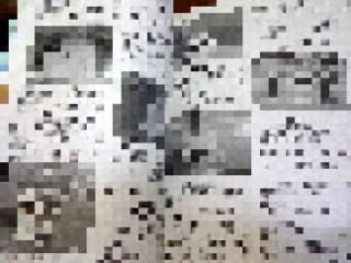 DSC06868
